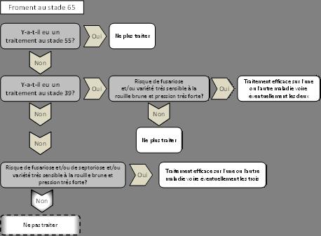 rouille-brune-schema-2